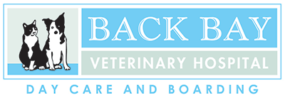 Back Bay Veterinary Hospital